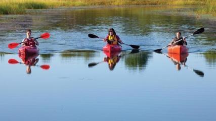 Kayak Erie Pa